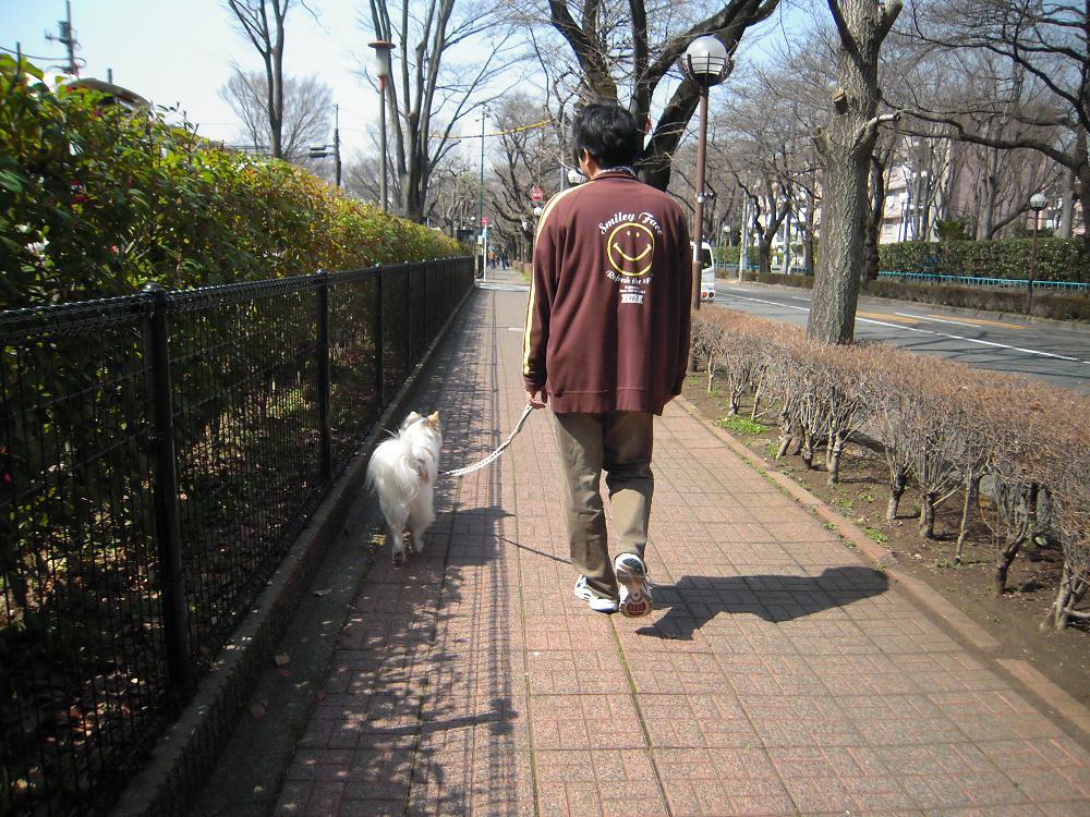 3.20お散歩