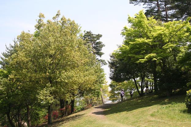 5.3昭和記念公園2