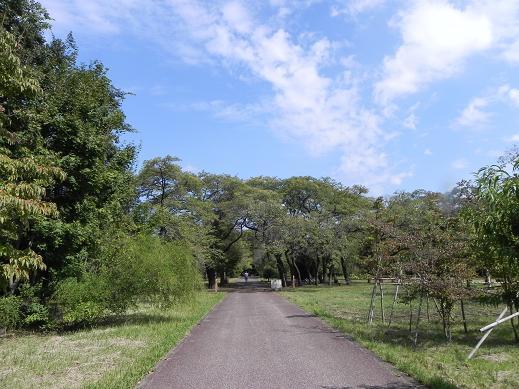 10.7武蔵野公園2