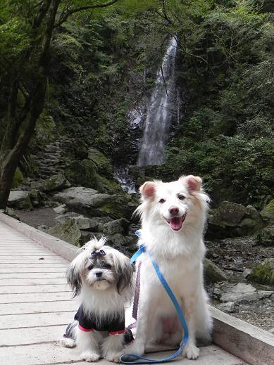 10.17払沢の滝6