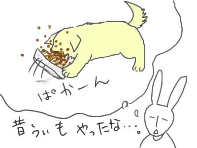 うぃ飯をこぼす