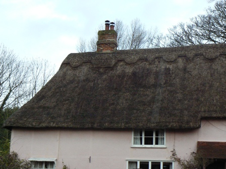 Thatched house roof