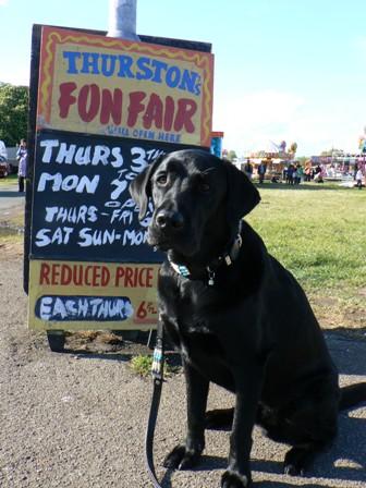 fun fair1