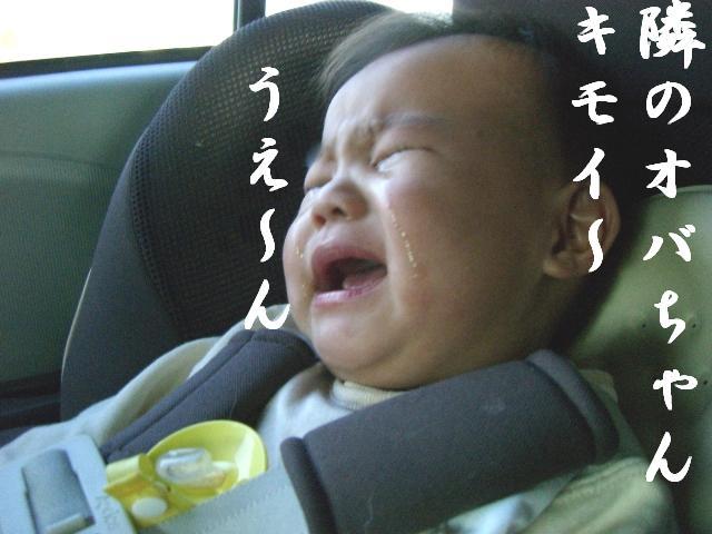 ベイベ号(┳◇┳)泣