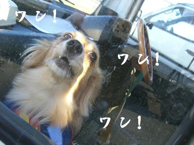 出せぇ!だせぇ〜〜!!