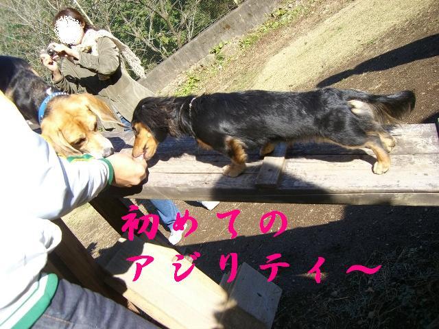 行くよスゴ〜イ!!