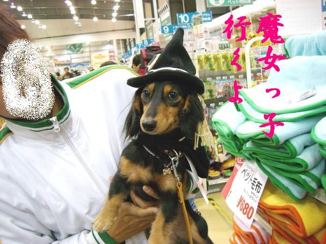 Σ(`д`ノ)ノ ヌオォ!!可愛すぎ☆