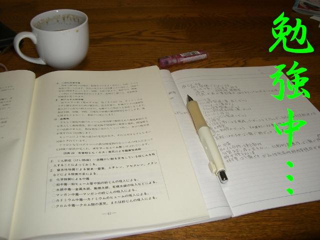 また勉強!