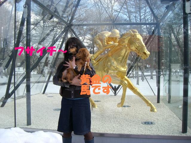 黄金の馬フサイチィ