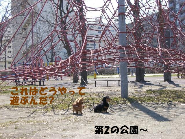 第二の公園
