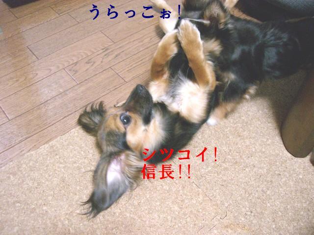うらら〜〜〜!