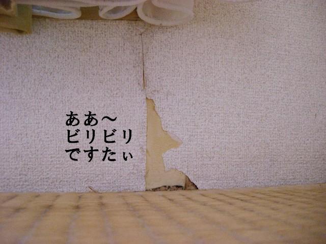 か、壁紙が…