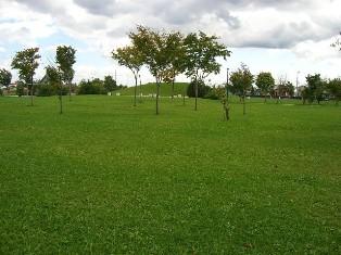 広い公園!