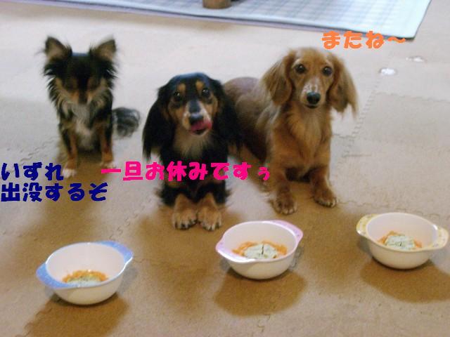 ((*´Д`)ノ.:。:*ォチマース.:☆。