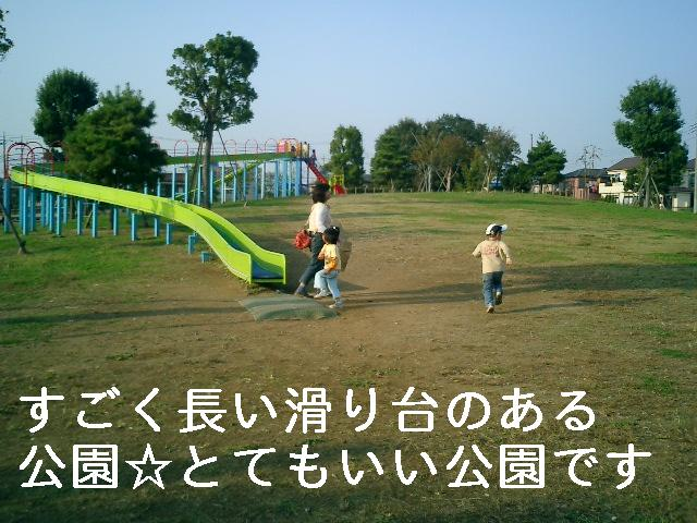 1162562562064884.jpg