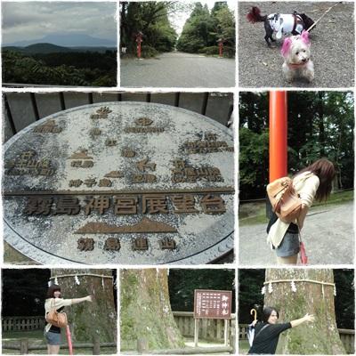 霧島神社�
