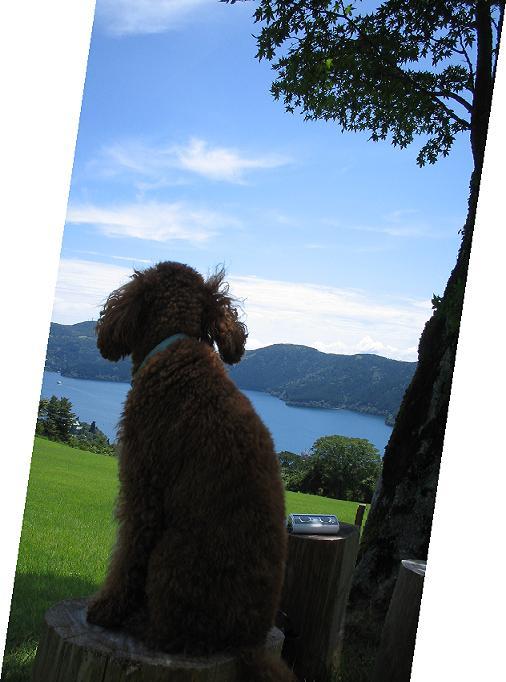 芦ノ湖とKAPI