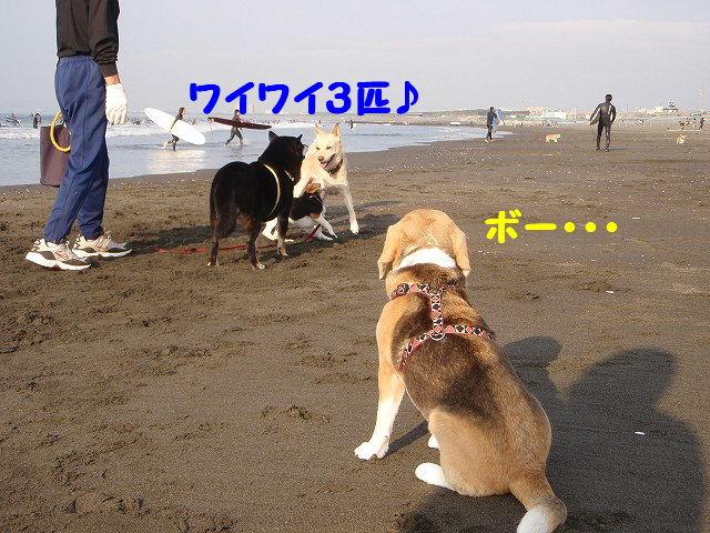 1257678566294149.jpg