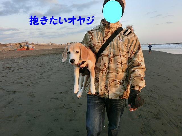 1356272788168743.jpg