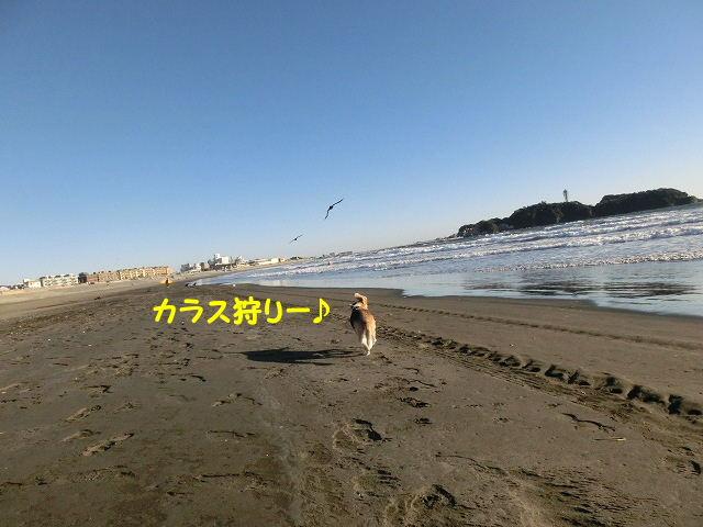 1448612323598484.jpg