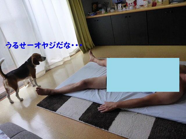 1602146963806713.jpg