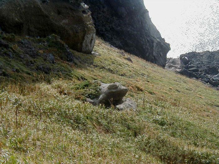 カエル岩(母発見)