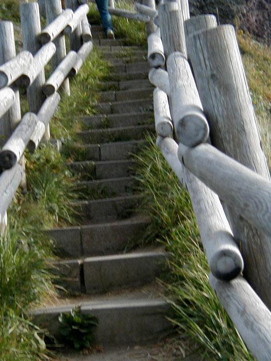 こんな階段がたくさん…(涙)