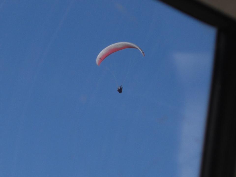 空を気持ち良さそうに飛んでいますが…。