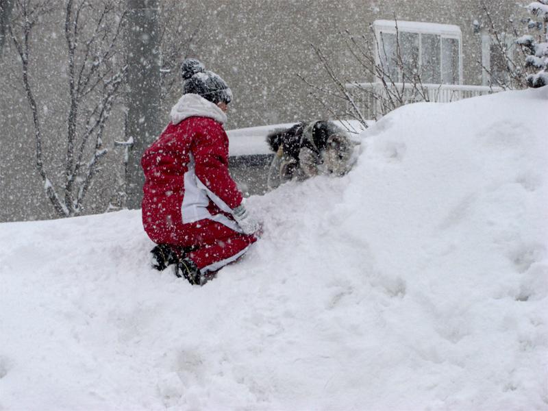 キラジの初大雪