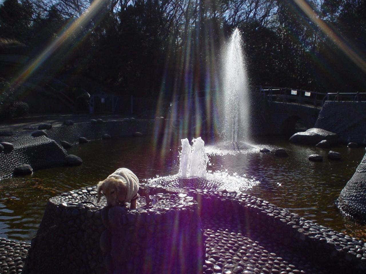 噴水の神.jpg