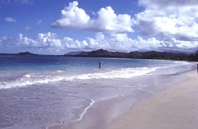 ハワイの海1.jpg