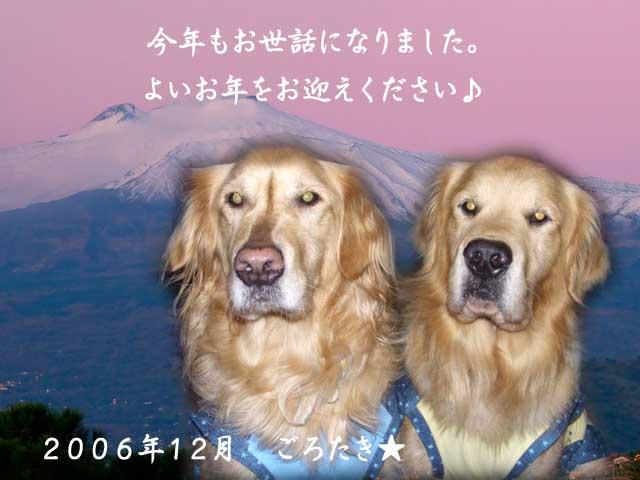 1167549087898920.jpg