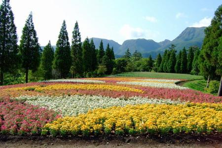 060626くじゅう花公園1