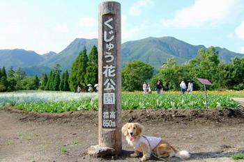 060626くじゅう花公園にて