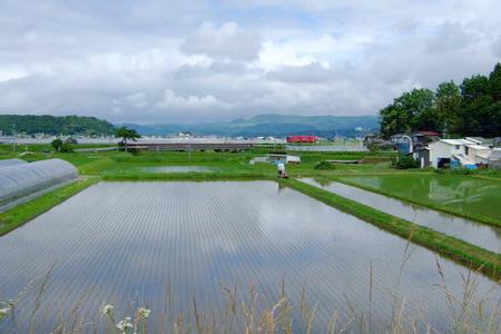 060627のどかな田舎風景