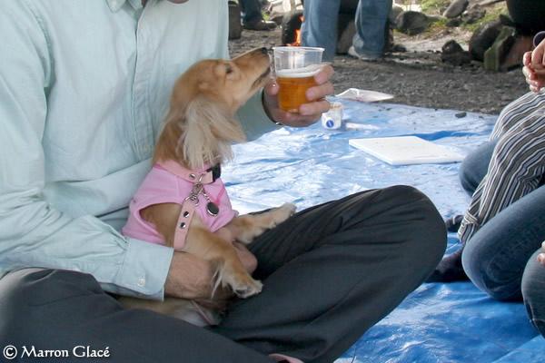 061001パパのビールちょうだい!