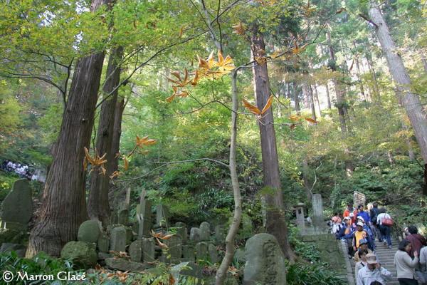 061105山寺の石段