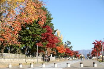 061111上杉神社の公園
