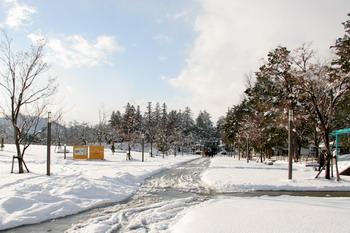 070109雪の公園