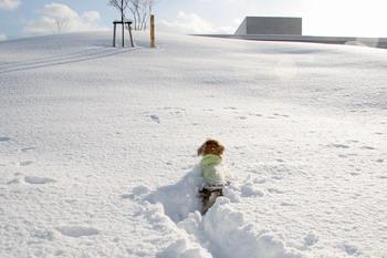 070109雪の公園を走るマロン