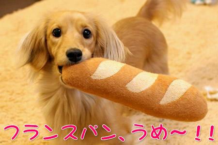 070228フランスパンうめ〜!