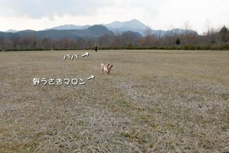 070409七ヶ宿公園