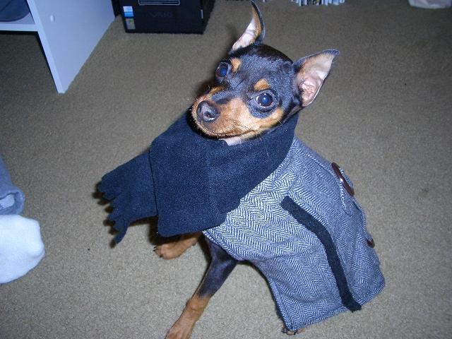 coat2.jpg