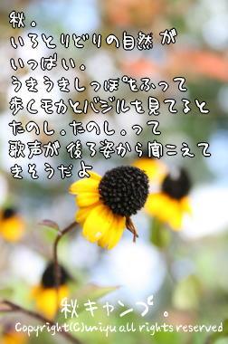 1229521839665668.jpg