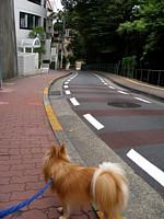 富士見坂2.jpg