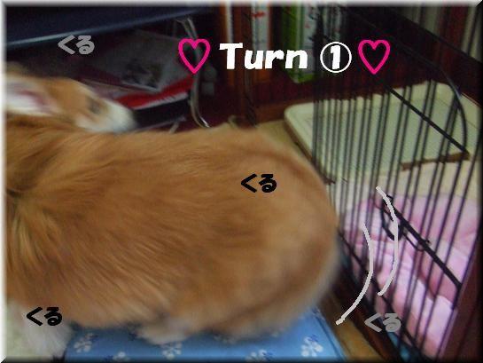 turn�