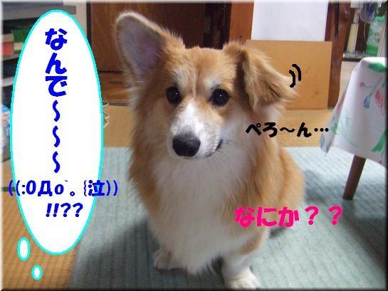 ぉ耳がぁぁぁ〜!!