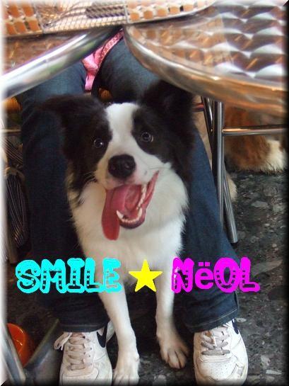 SMILE☆Noёl