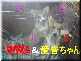 MOKA&愛音ちゃん