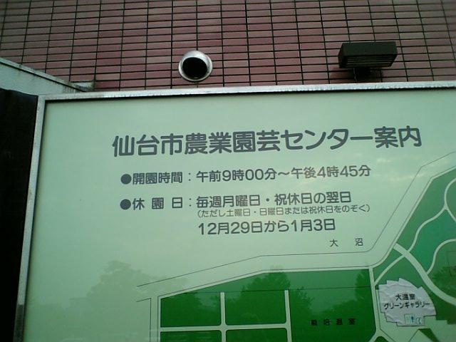 1212914536561032.jpg